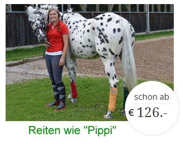 Ferien für Reiterinnen und Reiter in Österreich, Salzburger Land