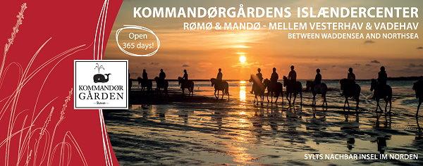 Preisliste Reiturlaub und Strandritte an der Nordseeküste in Dänemark