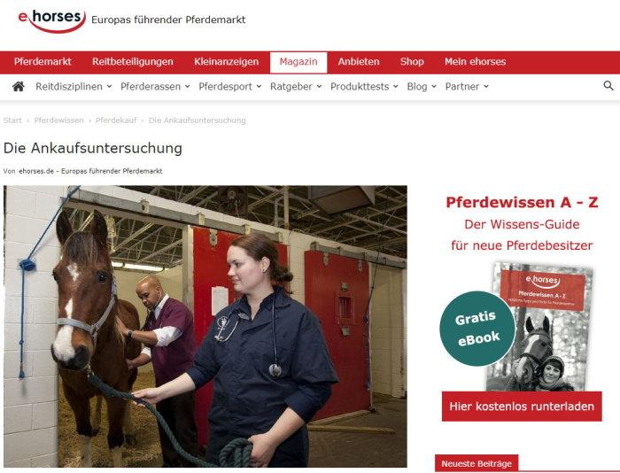Grundsätzlich wird die Ankaufsuntersuchung oder kurz AKU für jeden Pferdekauf empfohlen