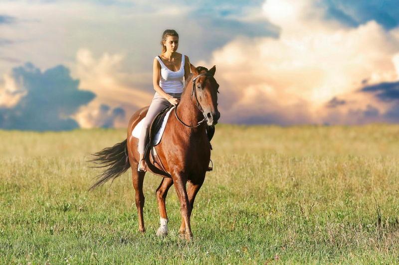 reiten auf dem pferd - einfach wunderbar