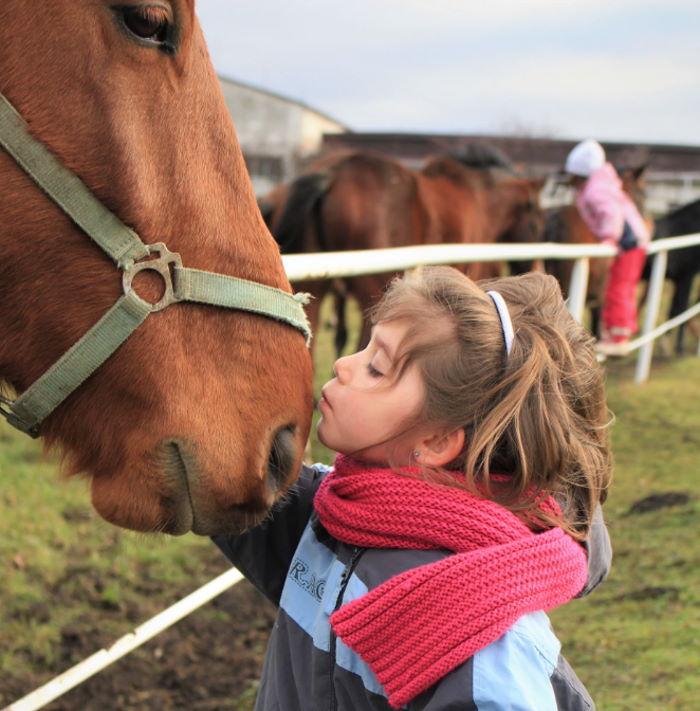 Kinder lieben Pferde