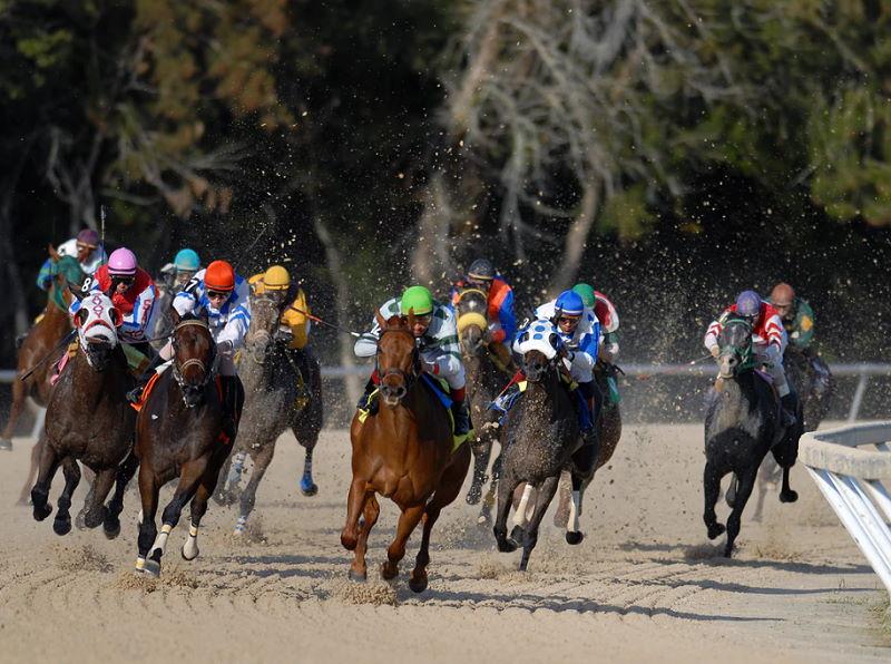 Pferderennen ist ein rasanter Reitsport