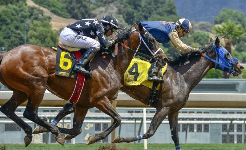 Pferderennen Online Casinos