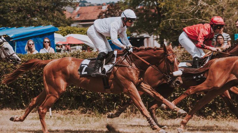 Pferderennen - Pferdewetten- Schöne Pferde - Schöne Frauen
