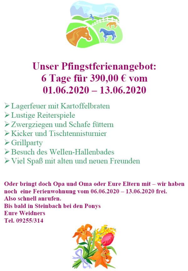 Pfingstferien-Reitferien-Bayern-Ponys