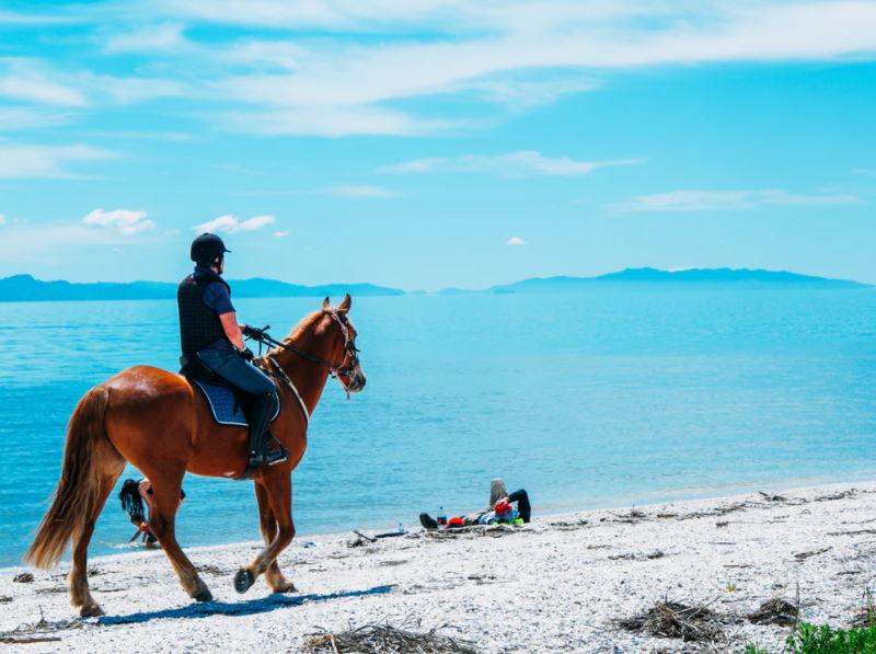 Wanderreiten - Faszination Reiten mit dem Pferd in der Natur