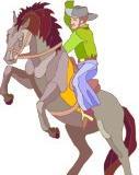 Ein Pferd soll eingeritten werden, wie alt sollte es mindestens sein?