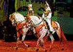 Welches ist das bekannteste Pferd Spaniens?