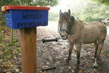 Pferdeklappe Nrw