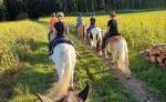 Wanderreitbetrieb Stormy Horse Ranch