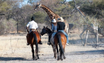 PFERD & REITER: Reiturlaub in Afrika, Botswana, Kalahari