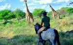 PFERD & REITER: Afrika - Namibia