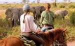 PFERD & REITER: Afrika - Tansania
