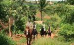 Pferdesafari Uganda