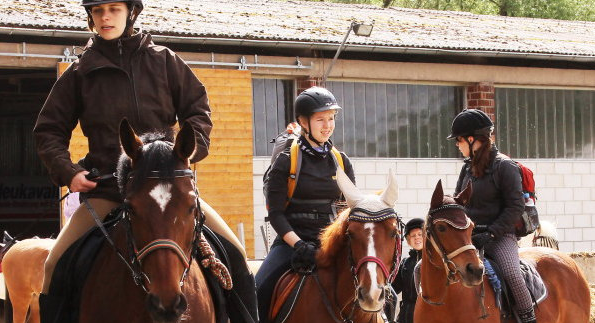 Das Glück liegt auf dem Rücken der Pferde