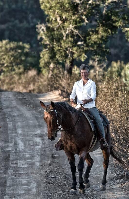 Ausreiten mit dem Pferd - Portugal