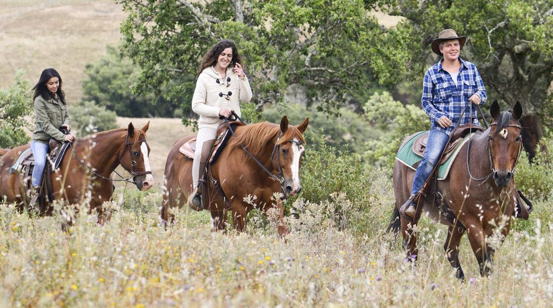 Reiterferien mit Pferden in Portugal auf der Sundance Ranch