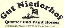 Gut Niederhof - Quarter und Paint Horses Gestüt in Nordrhein-Westfalen