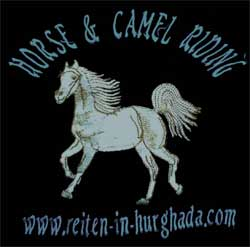Gamila Stable Horse & Camel riding