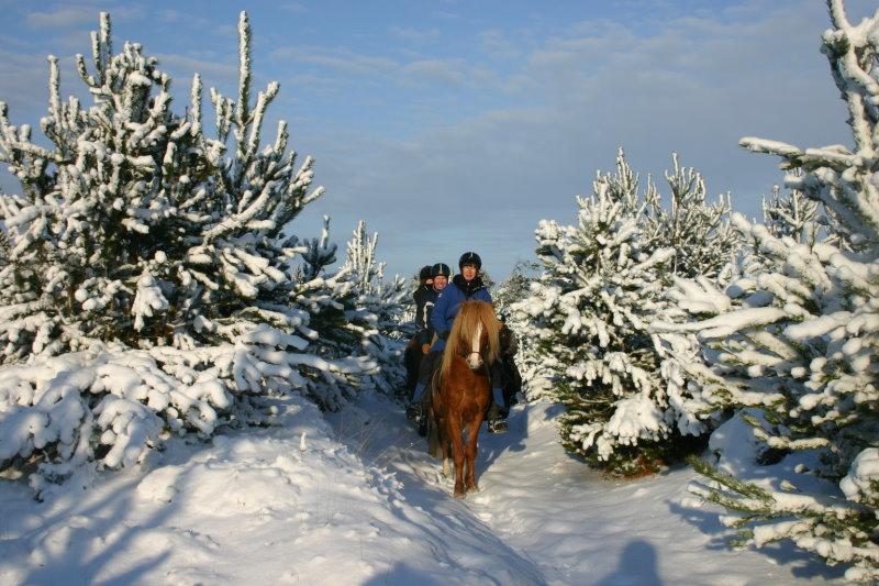 Reiten in einem Winterwunderland