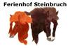 Reiterhof Steinbruch in der Lüneburger Heide