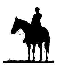 Unterricht im Westernreiten für Anfänger und Fortgeschrittene, bieten wir auch Unterricht in Bodenarbeit / Natural Horsemanship an.