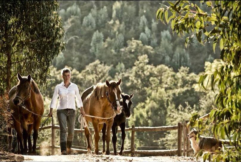 Mit Pferden im Urlaub leben - Portugal