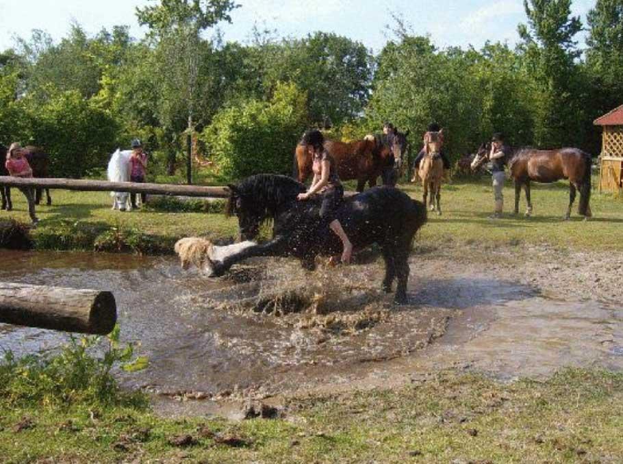 Reiterferien für Mädchen in Niedersachsen