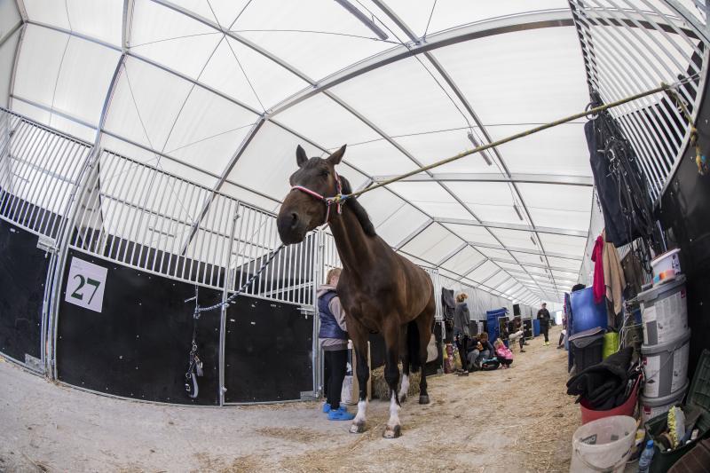 Reithalle mobiler Pferdestall