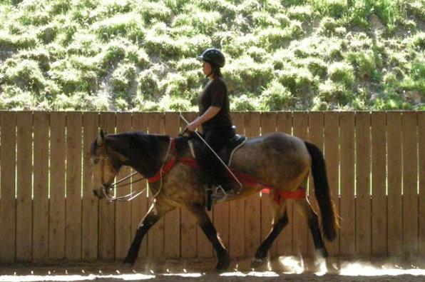 ein Pferd mit Leichtigkeit zu reiten