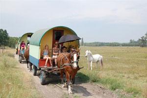 mit dem Zigeunerwagen durch die Puszta