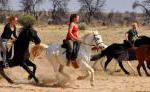 Reiturlaub in der ursprünglichen Natur Afrikas