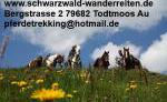schwarzwald-wanderreiten.de