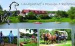 Kollerhof - Traumurlaub für Pferdefreunde