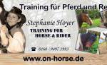 Western- und Freizeitreiter Training - Reitunterricht