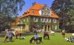 Ponyhof Schleithoff