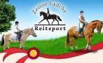 Alles für Reiter und Pferd!