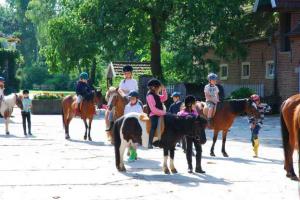 Reiterferien für Schulklassen