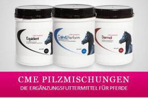 Pferdeergänzungsfuttermittel mit Pilzmischungen für Ihr Pferd