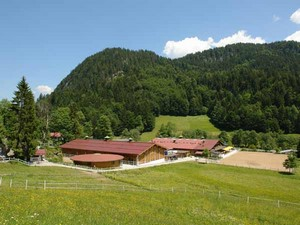 Unser Alpenreiterhof St. Georg