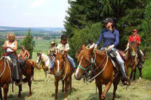 Westernreiten - Freizeitreiten in der Thüringischen Rhön