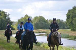 Ausreiten mit dem Pferd in die Umgebung Ostfriesland