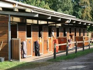 Reitschule Birkenhof in Nordrhein-Westfalen