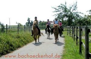 Bachäckerhof - Reiterferien und Reitkurse in Baden-Württemberg