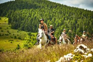 Bärentrail in Rumänien
