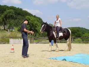 MB-Westerntraining Reitunterricht für Ein und Umsteiger ! Sie haben bisher keine Erfahrung mit Pferden, möchten aber gern mehr über diese schönen Tiere lernen, mehr über den richtigen Umgang erfahren? Sie haben schlechte Erfahrungen mit Pferden gemacht un