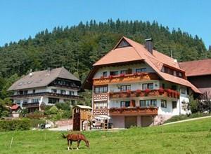 Unser Haus im Prechtal vom Schlosshof - der Urlaubsbauernhof