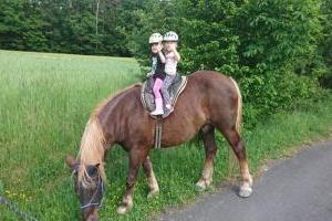 Glückliche Kids auf dem Pferderücken