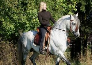 Vom klassischen Dressursattel über den Spezialisten für Gangpferde bis zum Allrounder für Dressur und Freizeit: Iberosattel hat Antworten für jeden Reiter und jedes Pferd.