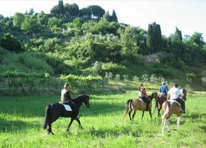 Working Holidays in der sonnigen Toskana